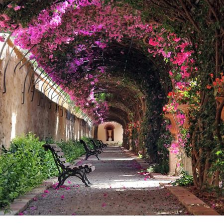 Tunel floral